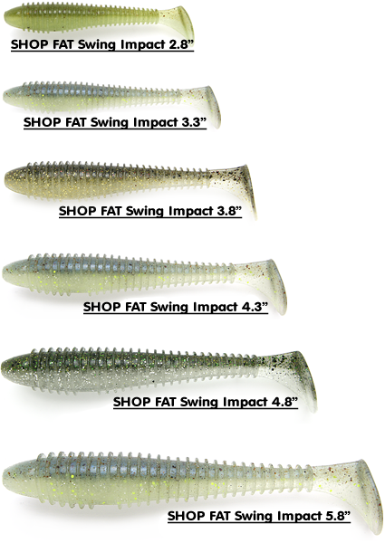 Swimbaits – How and When to Use Them   The Ultimate Bass